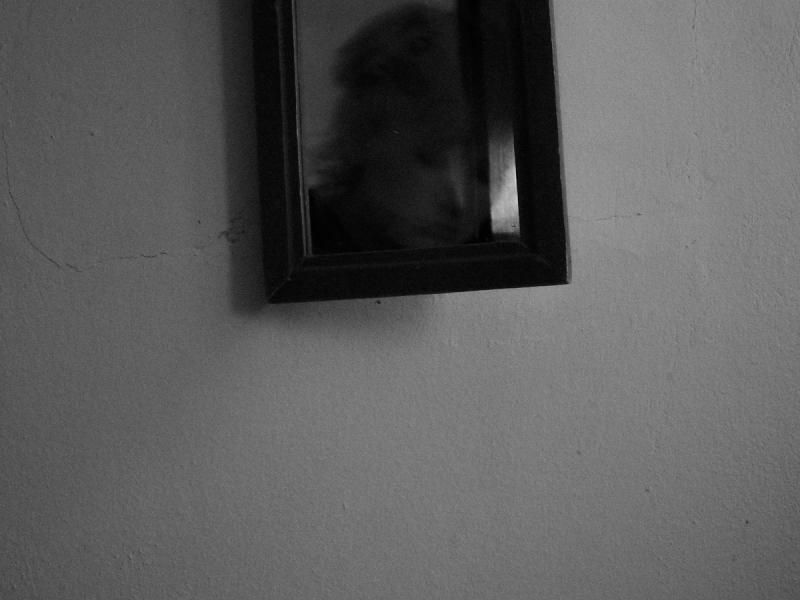 http://opcionfoto.com/files/gimgs/th-27_opcion-foto-sofia-vergara-vii.jpg
